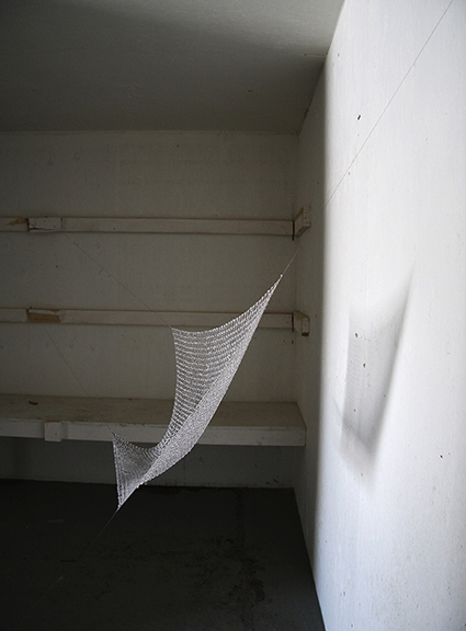 Multiple interpretations and experiments in an abandoned building during the summer of 2008 inspired me to continue the project using water at sub-zero temperatures.